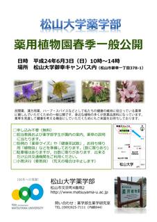 薬用植物園一般公開ポスター(2012春).jpg