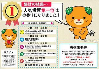 mikyan_result.jpg